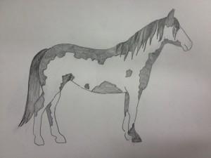 Frame overo-värityksessä läiskät muodostavan ikään kuin kehyksen hevosen ympärille